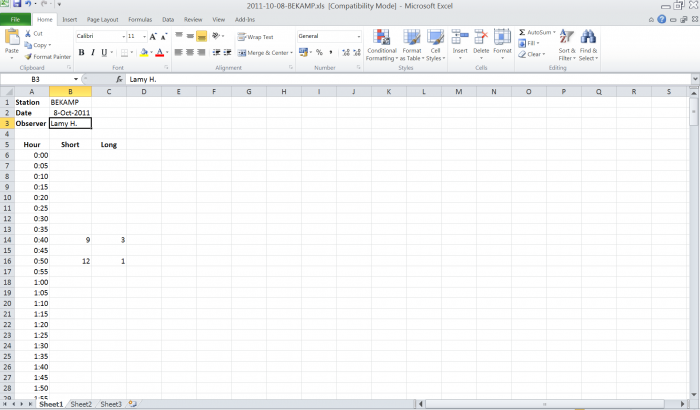 example Excel sheet